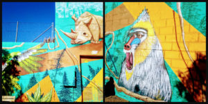 Ribbet collage grafit